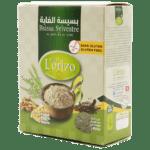 Bssisa-sylvestre-lorizo-2
